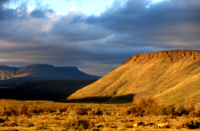 South African Landscape | Word from the Savanna